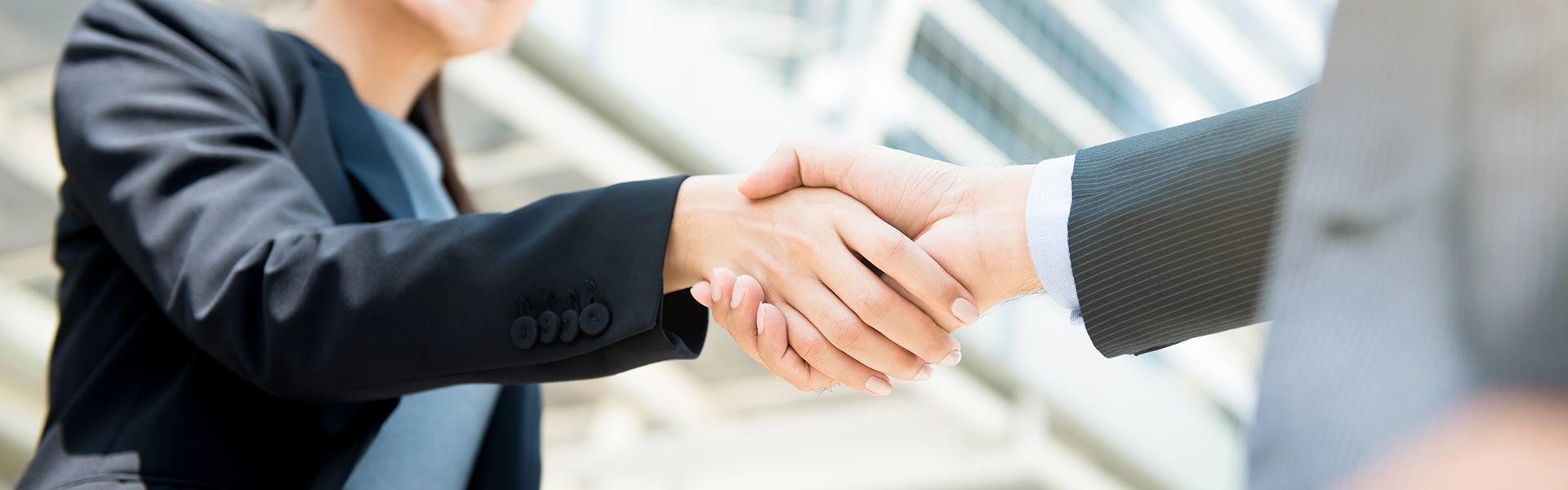 Businesswoman making handshake with a businessman